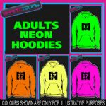 17th BIRTHDAY GIFT  ADULTS TEENAGER ELECTRIC HOODIE HOODY